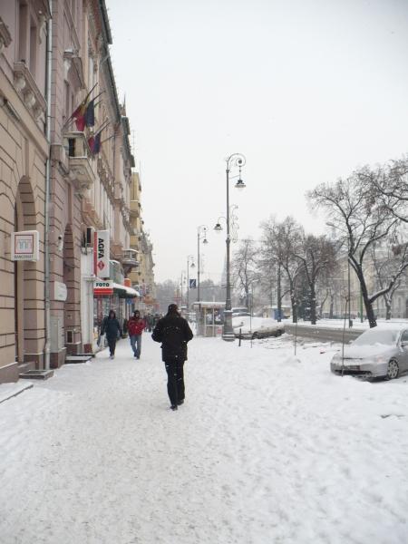 poze iarna arad
